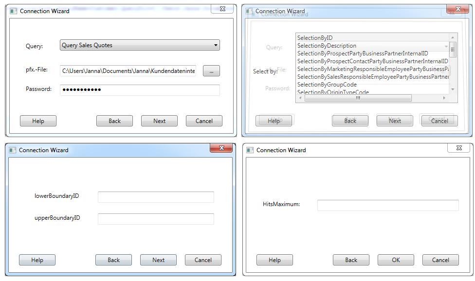 MEHRWERK Qlik-SAP-Cloud-Connector Wizard