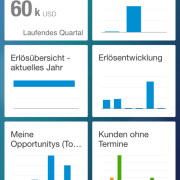 SAP Cloud for Sales - MobileApp 1
