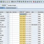 SAP Berechtigungsmanagement Benutzerverwaltung ändern