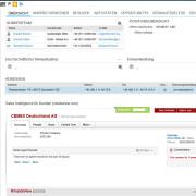 SAP Cloud for Sales - Kundendaten