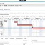 SAP Business ByDesign Projektmanagement
