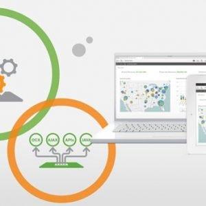 Qlik Sense Enterprise BI Platform