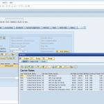 SAP Multi Carrier Transportmanagement mit ShipERP | Sales Order Integration